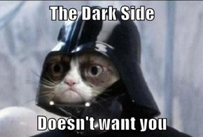 The Dark Side  Doesn't want you