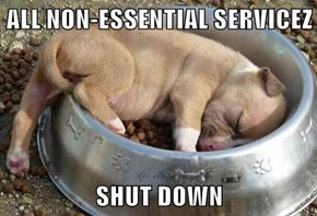 ALL NON-ESSENTIAL SERVICEZ  SHUT DOWN