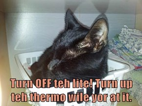 Turn OFF teh lite! Turn up teh thermo wile yor at it.