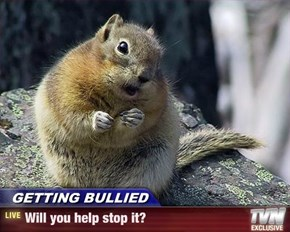 GETTING BULLIED - Will you help stop it?
