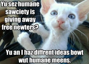 Yu sez humane sawciety is giving away free newters?