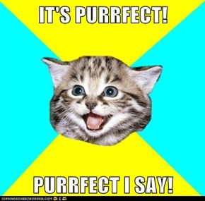 IT'S PURRFECT!  PURRFECT I SAY!