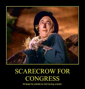 SCARECROW FOR CONGRESS