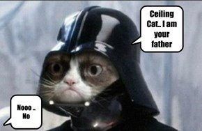 Ceiling Cat.. I am your father