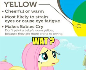 About Fluttershy Color.
