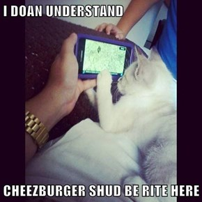 I DOAN UNDERSTAND  CHEEZBURGER SHUD BE RITE HERE