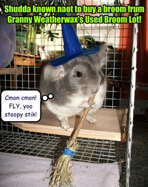Shudda known naot to buy a broom frum Granny Weatherwax's Used Broom Lot!