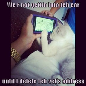 We r not gettin into teh car  until I delete teh vet's address