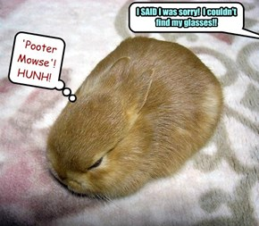 'Pooter Mowse'!  HUNH!