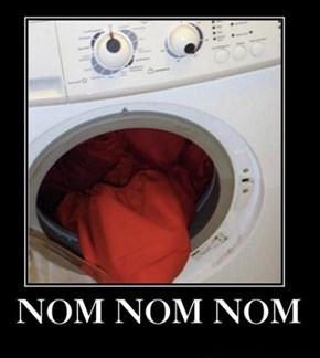 One Crazy Washer