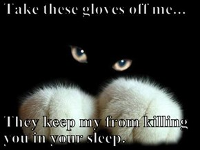 Take these gloves off me...  They keep my from killing you in your sleep.