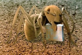 One Tiny Ant Holding One Tiny Microchip