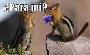 ¿Para mí?