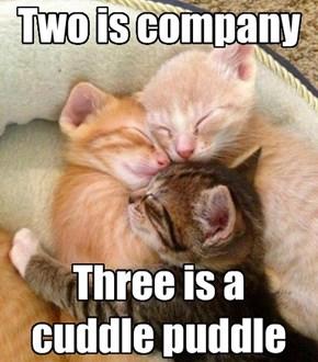 Puddle of Cuddle