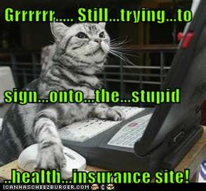 Grrrrrr..... Still...trying...to sign...onto...the...stupid ..health...insurance site!