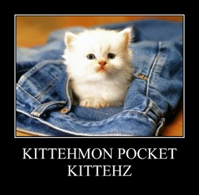 KITTEHMON POCKET KITTEHZ