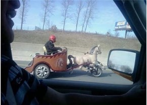 Faster, Steed!
