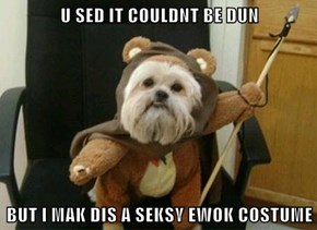 U SED IT COULDNT BE DUN  BUT I MAK DIS A SEKSY EWOK COSTUME