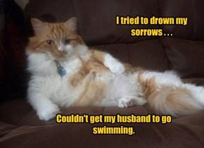 I tried to drown my  sorrows . . .