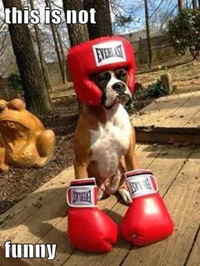 He's About to Knock You Out!