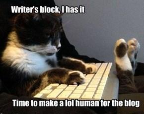 Writer's Block; Kitteh Solutions