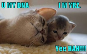 U MY DNA                     I M YRZ.   Yee HAH!!!