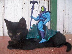 WE RIDE, PANTHOR!