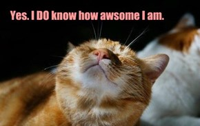 Yes. I DO know how awsome I am.