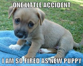 ONE LITTLE ACCIDENT  I AM SO FIRED AS NEW PUPPY