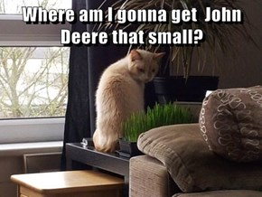 Where am I gonna get  John Deere that small?