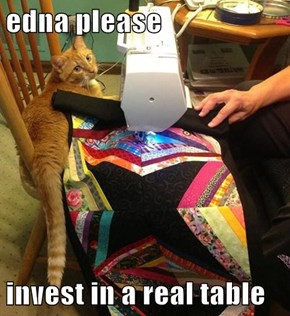 edna please  invest in a real table
