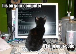 Programmer Kitteh is on the Job