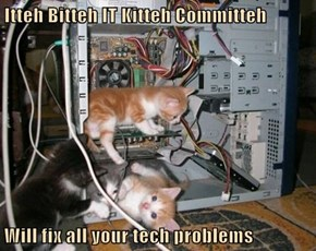 Itteh Bitteh IT Kitteh Committeh  Will fix all your tech problems