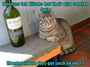 It seems teh kittehs hav their own Comfee Sofa  Wonder where they got such an idea?