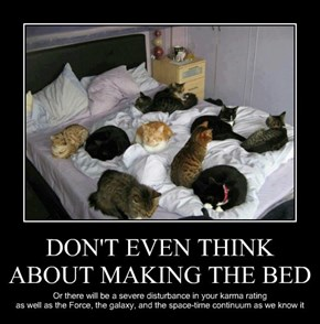 DON'T EVEN THINK ABOUT MAKING THE BED