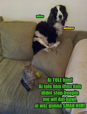 Ai TOLE him!  Ai tole him iffen him  didnt stop boopin  me wif dat bawl,  ai waz gunna SMAK HIM!