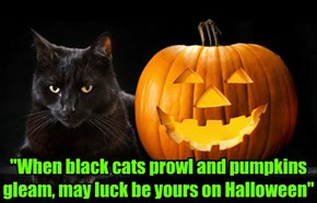 """When black cats prowl and pumpkins gleam, may luck be yours on Halloween"""