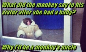 What did the monkey say to his sister after she had a baby?  Why I'll be a monkey's uncle