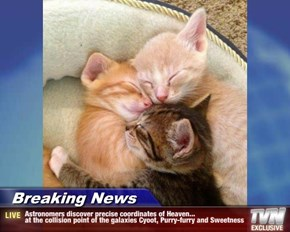 Breaking News - Astronomers discover precise coordinates of Heaven...  at the collision point of the galaxies Cyoot, Purry-furry and Sweetness