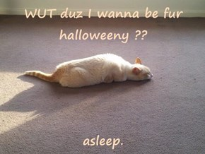 WUT duz I wanna be fur halloweeny ??  asleep.