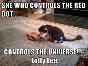 SHE WHO CONTROLS THE RED DOT...  CONTROLS THE UNIVERSE!! - Lolly Lee
