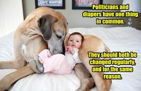 Politicians and diapers have one thing in common.