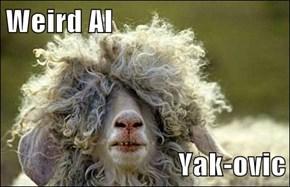 Weird Al  Yak-ovic