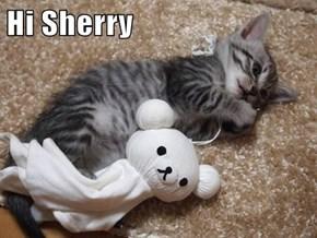 Hi Sherry