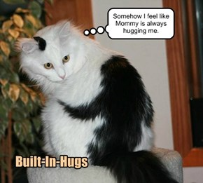 Built-In-Hugs