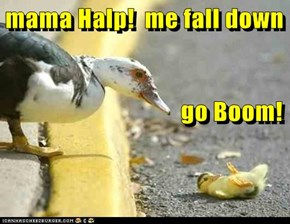 mama Halp!  me fall down                                    go Boom!