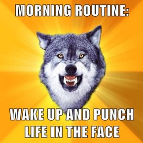 MORNING ROUTINE:  WAKE UP AND PUNCH LIFE IN THE FACE