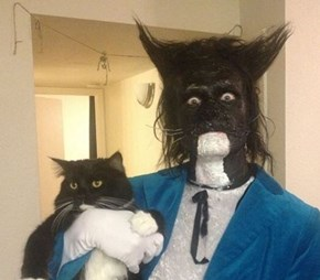 Creepily Devoted Cat Owner