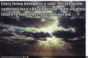 Every living being has a soul. We are given someone for a chosen period. Then we must return to the Father. Souls do not die.