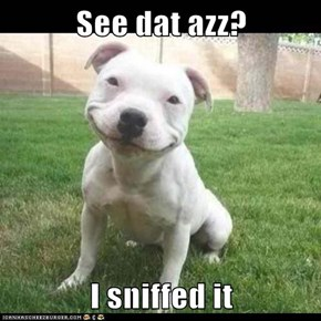 See dat azz?  I sniffed it